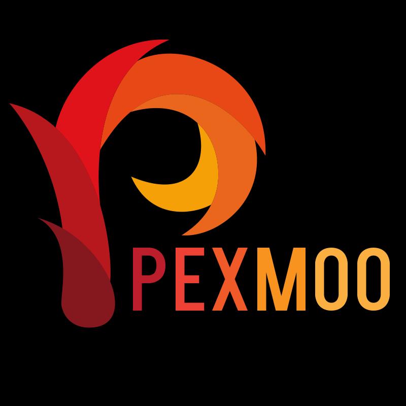 PEXMOO CONSULTANTS