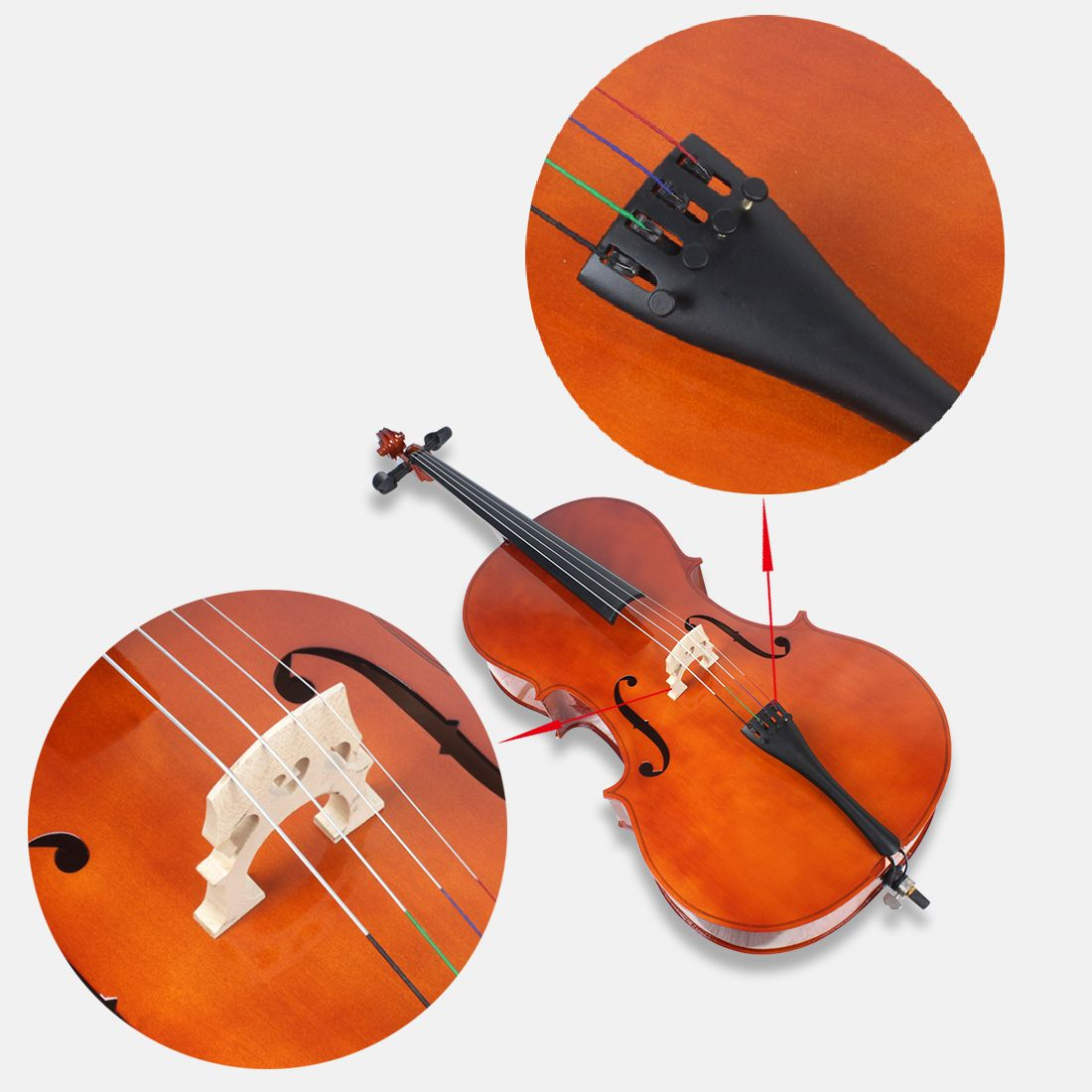 Asia Constansa Instrument Export Co Ltd