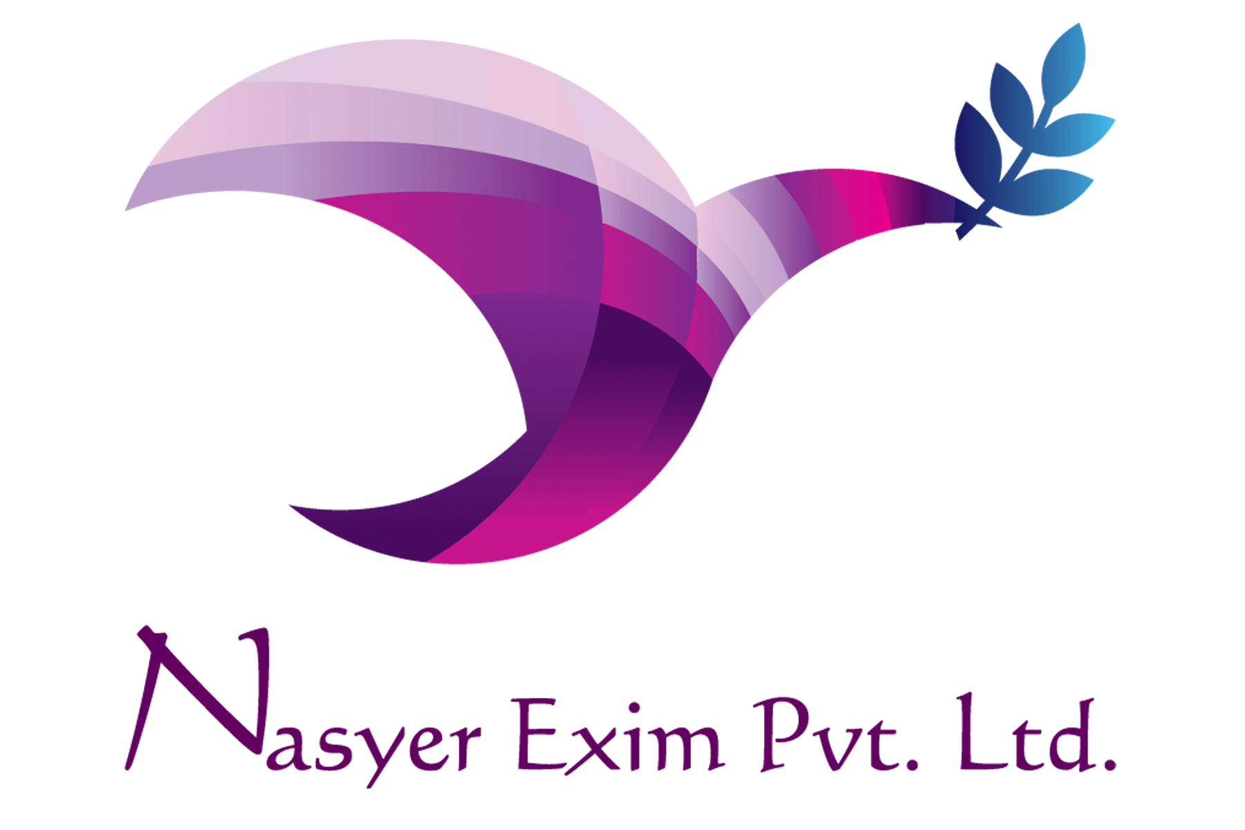 Nasyer Exim Private Limited