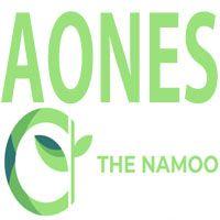 Aones Inc