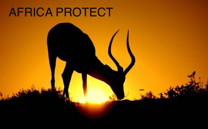 Africa protect medical supplies