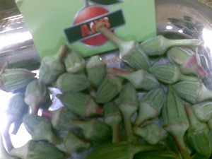 Fresh green Okra high quality to export
