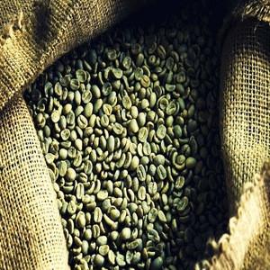 Grade AA wholesaler arabica roasted coffee beans best price