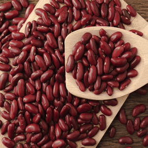 Wholesale Dried Small Dark Red Kidney Beans Price