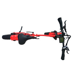 20 Inch Folding Electric Bicycle Fat Bike 36V 350W with MOZO Aluminum Suspension Fork