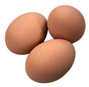 Best Fresh Nutritional Eggs