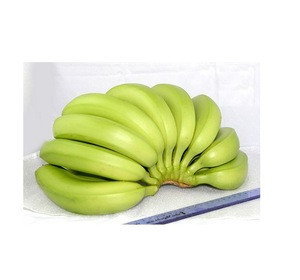 Delicious  Fresh Cavendish banana for sell