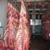 Fresh hala meat