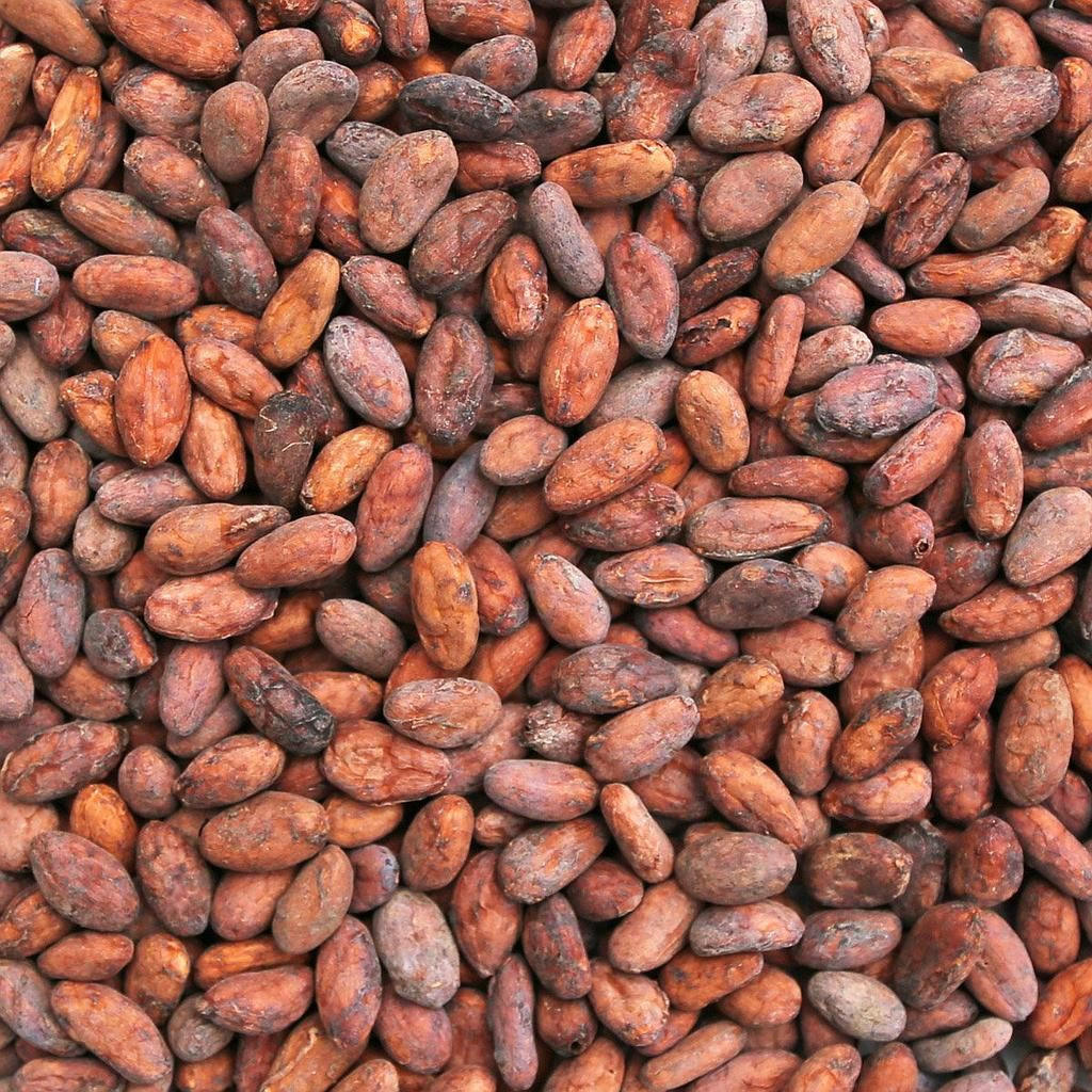 West African Roasted Cocoa Beans From Cameroon