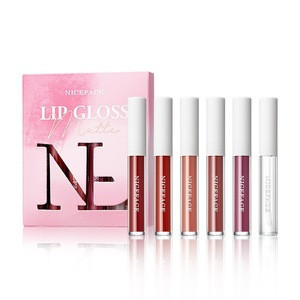 2020 new six rich color all-day long-lasting waterproof non-fading matte Nonstick lip gloss kit set with lip plumper liquid