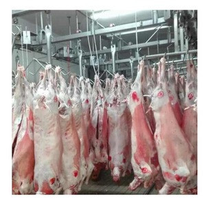 Frozen lamb/sheep meat Wholesale supplier 100% High quality cheap rate Bulk Quantity