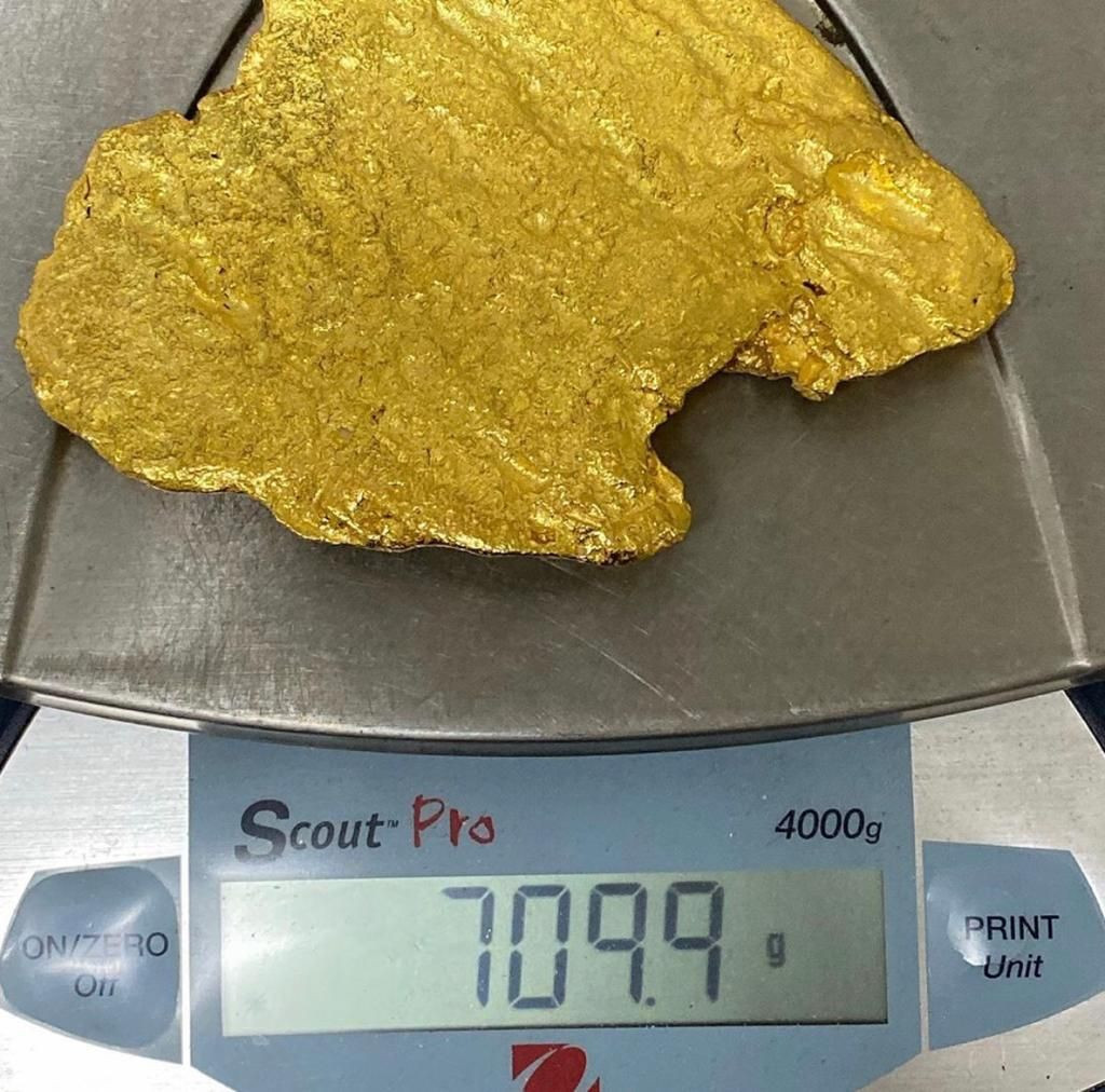 gold/ raw gold/gold bars