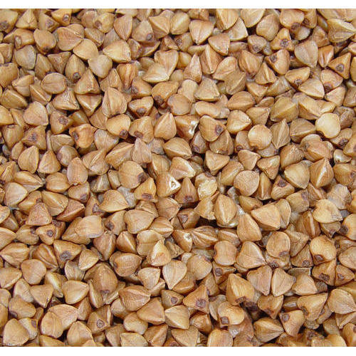 buckwheat Best Quality organic dried roasted