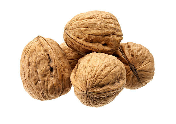 Ukraine Fresh Whole Nuts Inshell Walnut