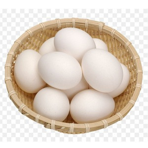 Ukraine Table White/Brown Egg for Sale
