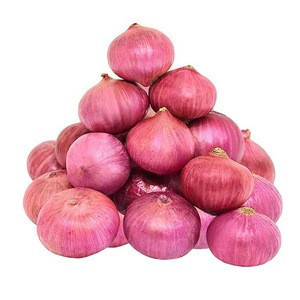 Fresh Onions,Yellow Onion ,Red onion At cheap Price