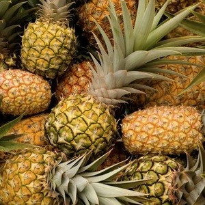 Fresh Sweet Pineapples For Sale