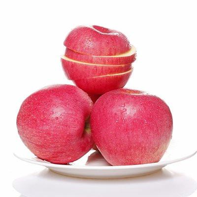 New Crop Fresh Apple with Good Price
