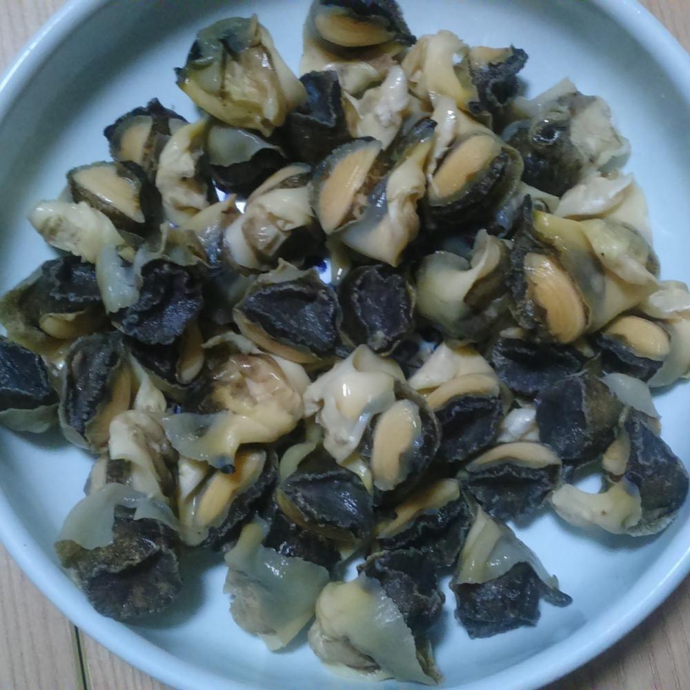 Quality Rresh Frozen Conch Meat / Frozen Geoduck / Frozen Escargots