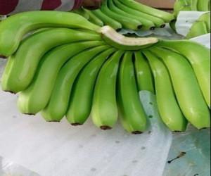 Cavendish Fresh Green Banana For Sale