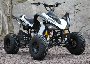 Chinese atv 250cc 200cc 150cc snowmobile farm equipment utility buying atv