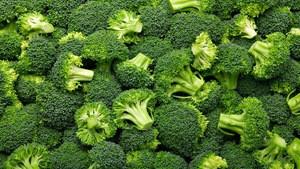 Fresh Broccoli ,Fresh Green Brocolli,Frozen fresh broccoli