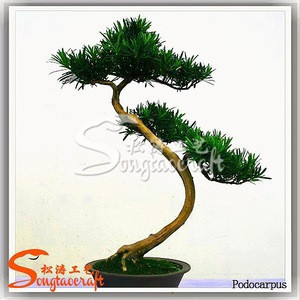 Import Hot Selling Bonsai Tree Plastic Harga Bonsai Plastik Bonsai Figurines From Guangzhou Songtao Artificial Tree Co Ltd China Tradewheel Com