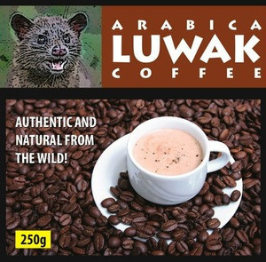 Wild Civet Coffee (Arabica) From Gayo Aceh