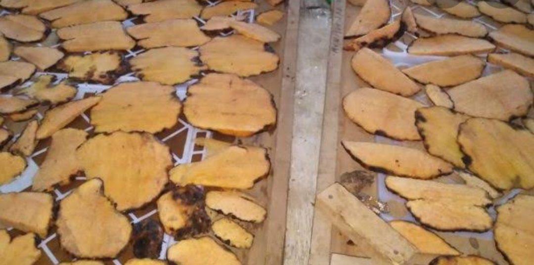 Dried yellow konjac chips