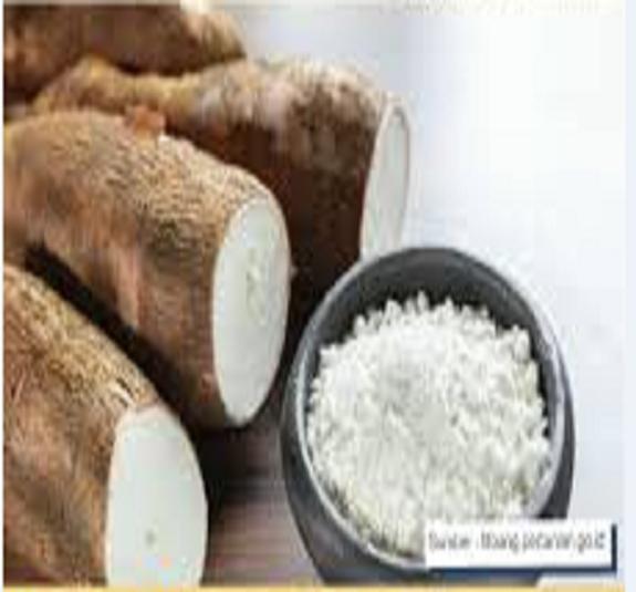 Wheat Flour Cassava ( Tapioca ) - HS Code 116.20.10
