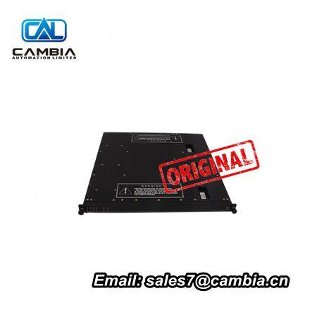 TRICONEX3501EInput/Output ModuleDCS