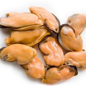 Frozen Oyster Meat Half Shell Mussel