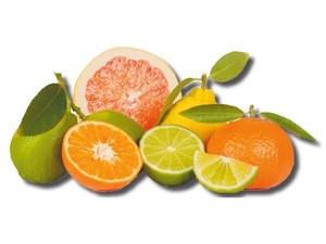 CITRUS FRUITS PRODUCTS/ FRESH MANDARIN/ORANGES