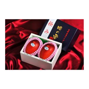 "Juicy Fresh Fruit, Miyazaki Japanese Mango, ""PREMIUM MANGO"""
