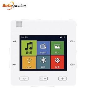 Professional Audio  Background Sound In Wall Restaurant Speaker System