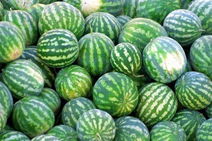 Red water melon for sales