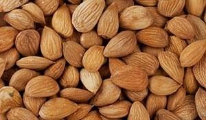 Apricot Kernel Apricot Nut Apricot,Raw Apricot Kernels,Natural Apricot Kernels