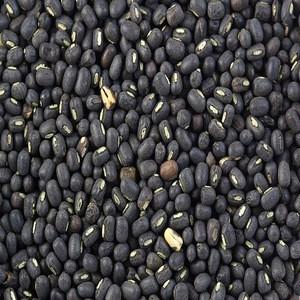 High quality Green Mung Beans/Vigna Beans