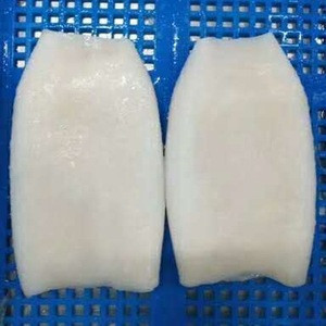 High quantity frozen squid frozen squid tube