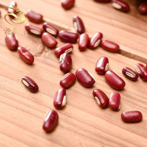 New Crop Small Dried Red Beans sprouting Natural coarse food grain adzuki beans