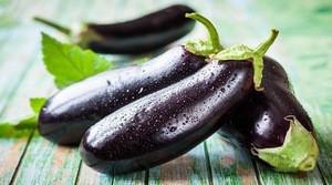 Wholesale Bangladeshi Vegetable Brinjal / Eggplant