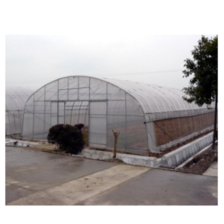 Commercial used commerica greenhouse for agriculture