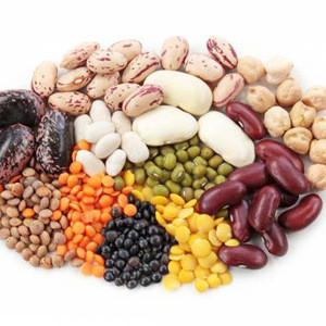 Black eyed beans /White Cowpea /Black Eye Bean (Vigna Beans)