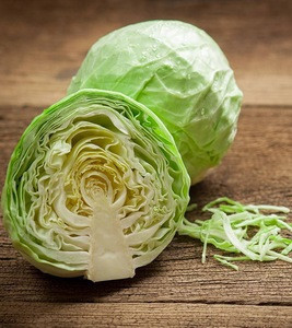 Fresh Green Ball Cabbage