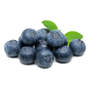 Mexico Grown Blue Berries Fruit BLUEBERRIES Robinson Fresh MOQ 12x 6 Ounce Quick Delivery in US