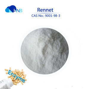Microbial rennet, renet powder as food additive with very best price