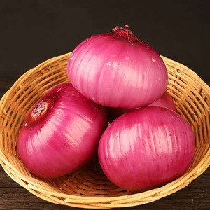 Supplier export bulk buyers price new specification vegetable fresh red scallion onion for sale