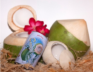 520ml coconut drink Miramar pure in Tin can OEM