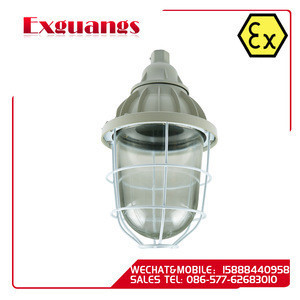 High pressure sodium lamp explosion proof lamp