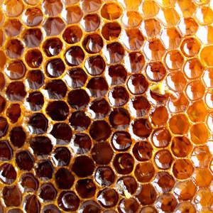 Organic Heather Honey for sale